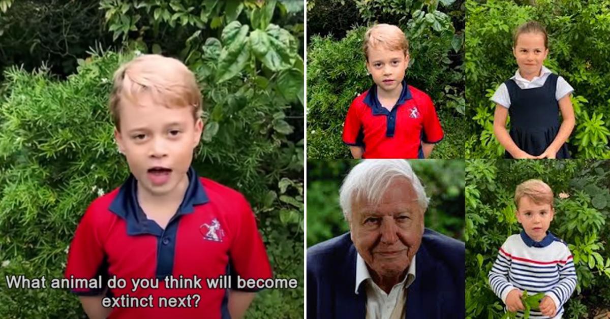 prince george princess charlotte prince louis ask historian david attenborough animals tro