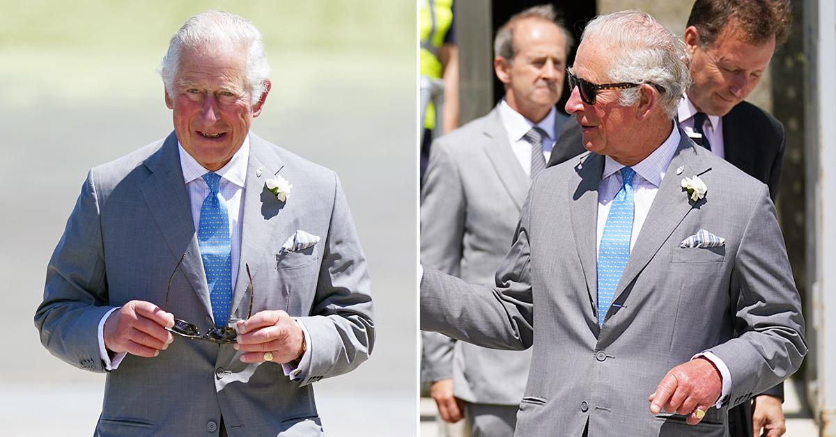 prince charles visits dorset tro
