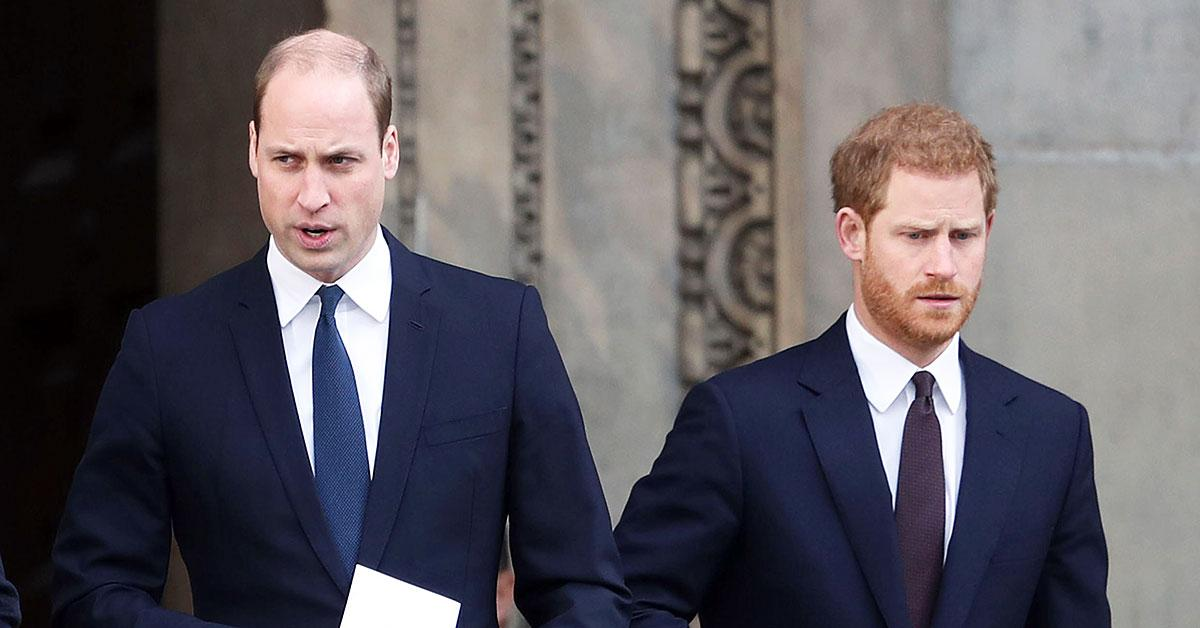 princess diana statue unveiling must bring prince william price harry together tro