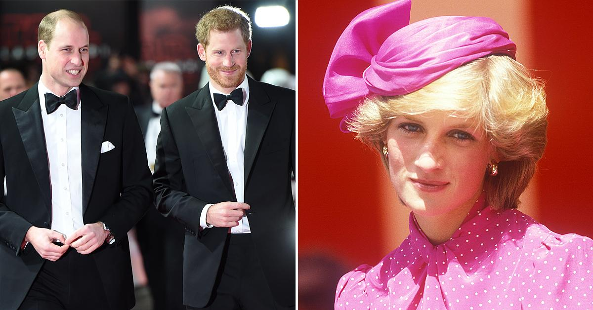 prince william prince harry will reunite at princess diana statue unveiling everything to know