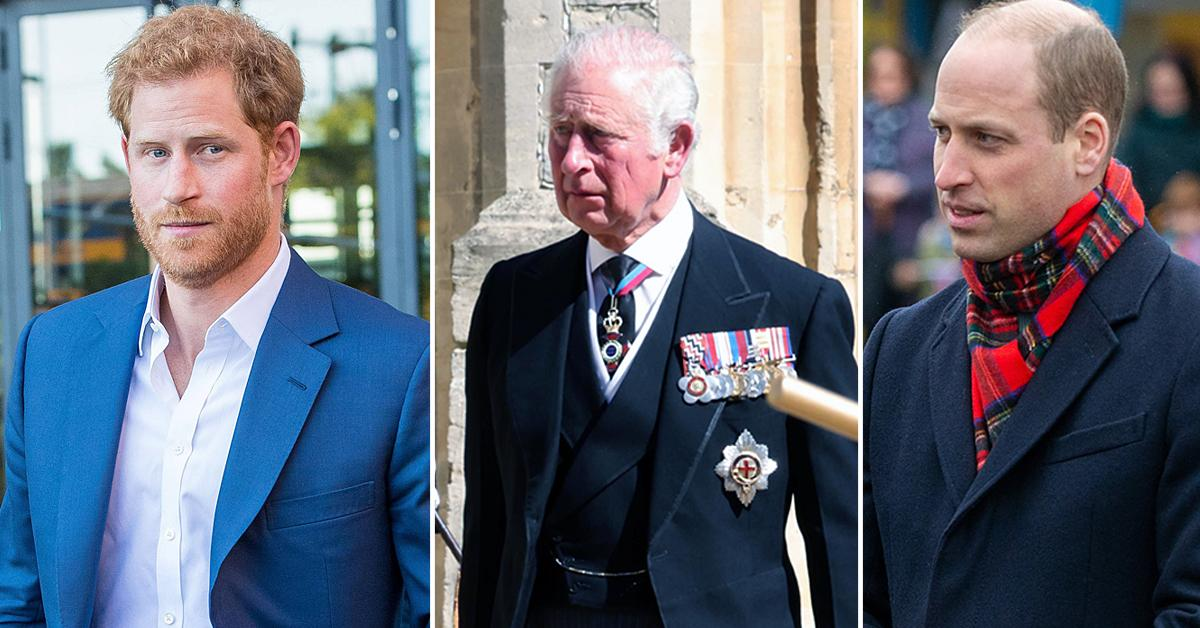prince harry ambushed prince charles prince william unscheduled meeting