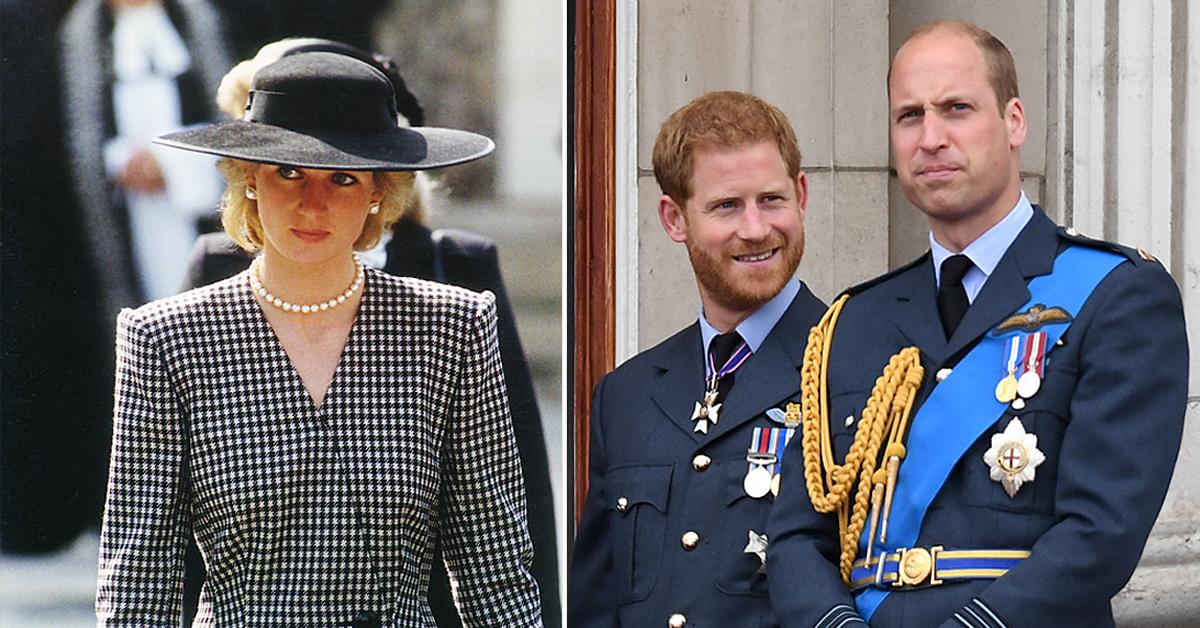 princess diana would be disappointed by prince william prince harrys rift claims biographer