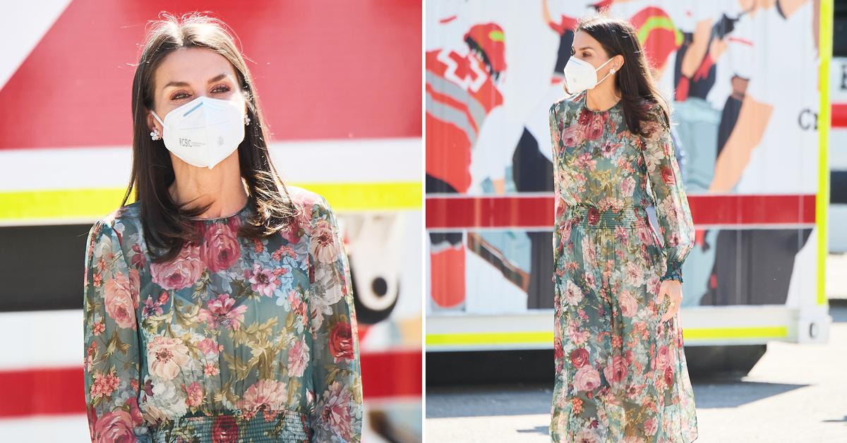queen letizia attends world red cross and red crescent day