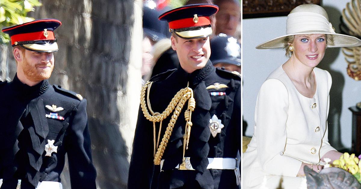 despite rift prince william prince harry come to agreement for princess diana statue tro