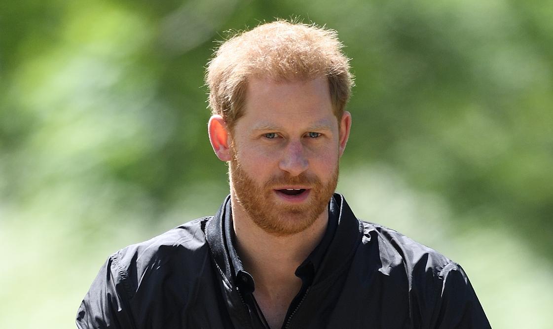 prince harry royal life